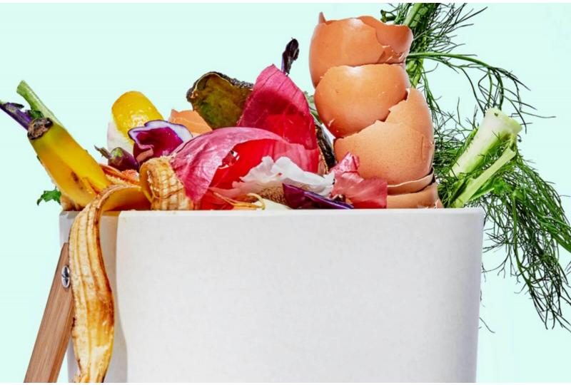 How to Stop Making Excuses and Start Composting Already