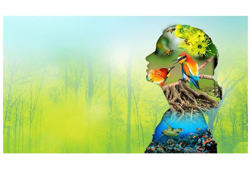 Biodiversity and Health