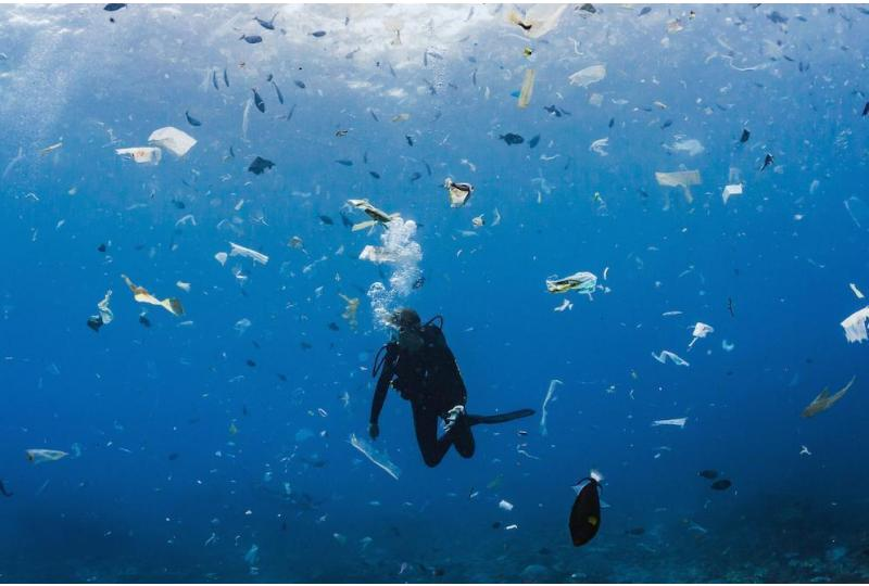 The pileup of plastic debris is more than ugly ocean litter