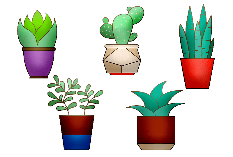 PSA: You Need More Plants in Your Home—Here's Why