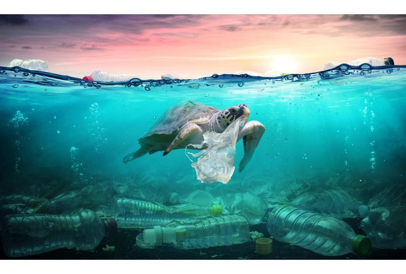 Plastic Pollution Facts: 20 Things to Know and What's Being Done to Help