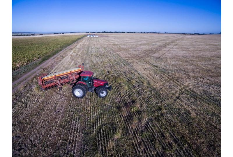Can we ditch intensive farming - and still feed the world?