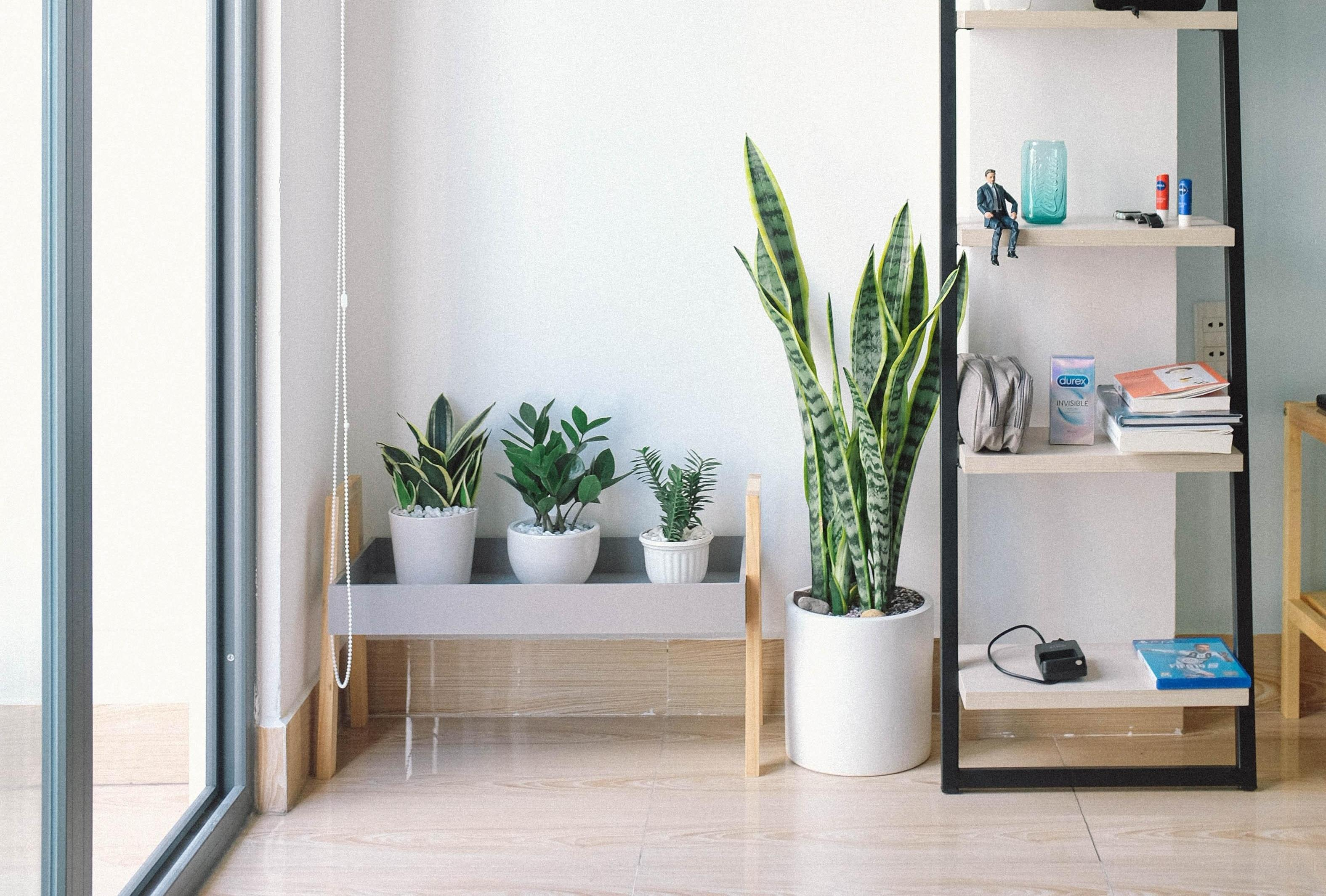 How To Start Living A Minimalist Lifestyle