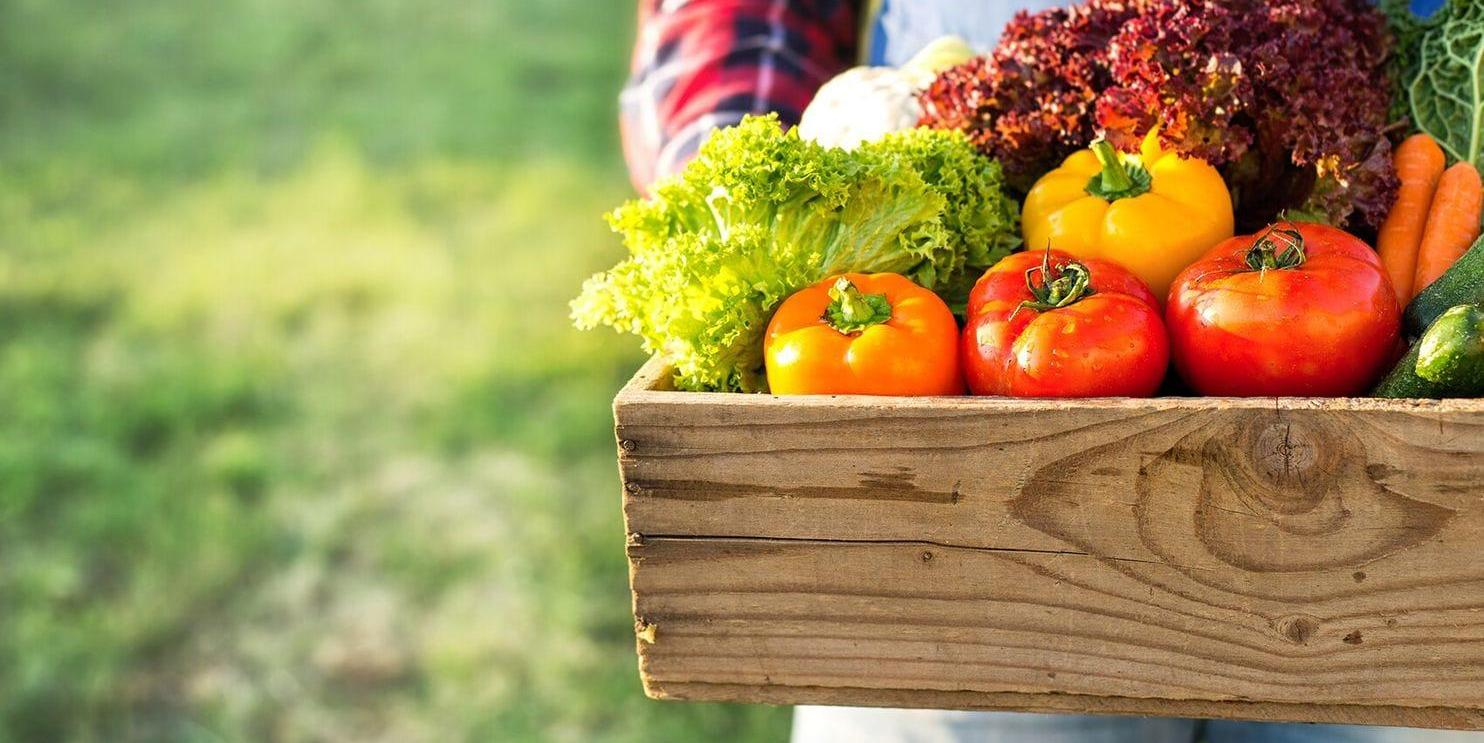 4 tips to help you get the most out of that farm box or CSA share produce