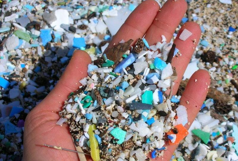 Microplastics in the Ocean May Be Vastly Underestimated, With up to 125 Trillion Particles Floating Around, Study Says