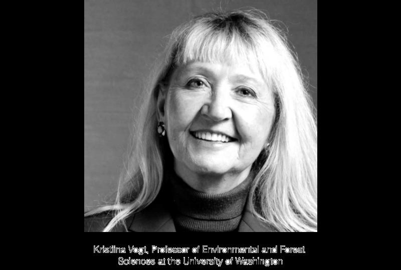 Professor Kristina Vogt