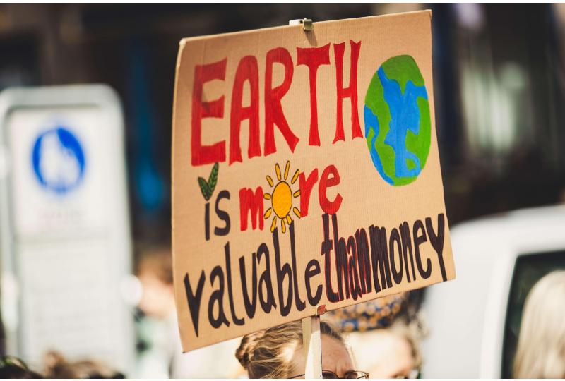 What is Environmental Activism?
