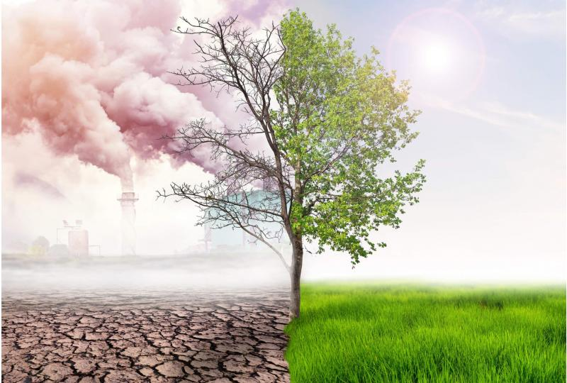 How will everything change under climate change?